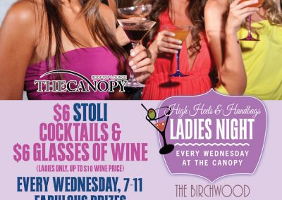 Ladies Night at The Canopy Poster